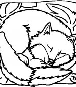 coloriage renards 004