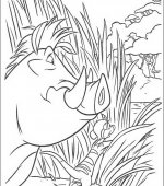 coloriage le rois lion 010