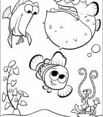 coloriage nemo le film 043