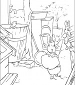 coloriage peter lapin 005